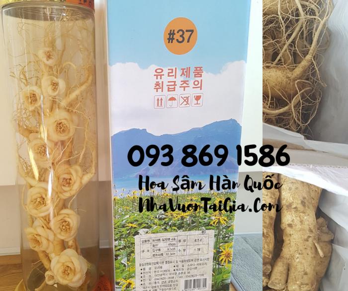 • Mua sâm tươi Hàn Quốc TPHCM -giá Nhân sâm Hàn Quốc  - gọi  093 869 158621