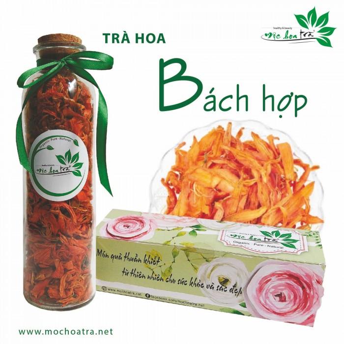 Trà hoa, trà thảo mộc Mộc Hoa Trà - Món quà thuần khiết từ thiên nhiên6