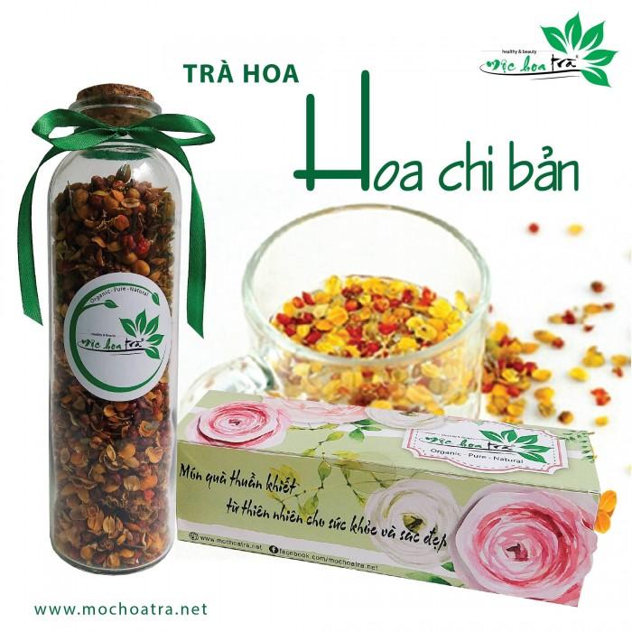 Trà hoa, trà thảo mộc Mộc Hoa Trà - Món quà thuần khiết từ thiên nhiên12