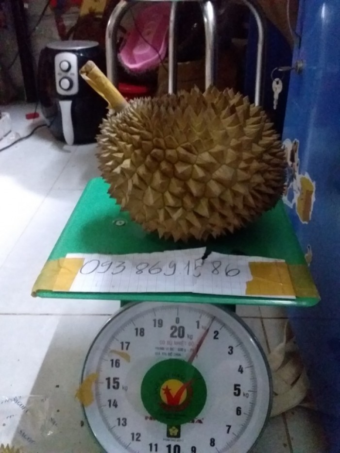 Sầu riêng rụng sầu riêng hạt truyền thống Vườn Nhà Đậu Dậu Lâm Đồng -093 869158610