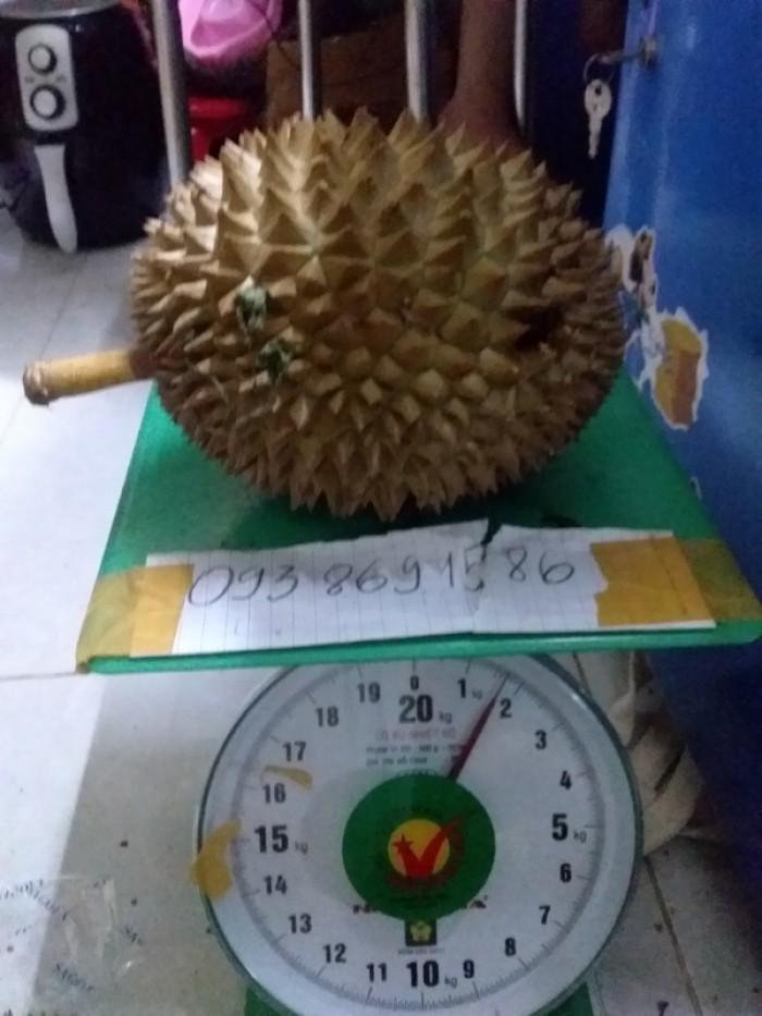 Sầu riêng rụng sầu riêng hạt truyền thống Vườn Nhà Đậu Dậu Lâm Đồng -093 86915863