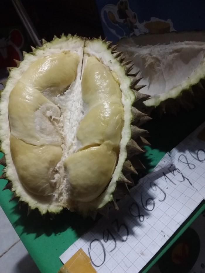 mua Sầu riêng hạt truyền thống rụng chín cây ăn ngay TPHCM trái 2-3kg gọi  093 869 15861