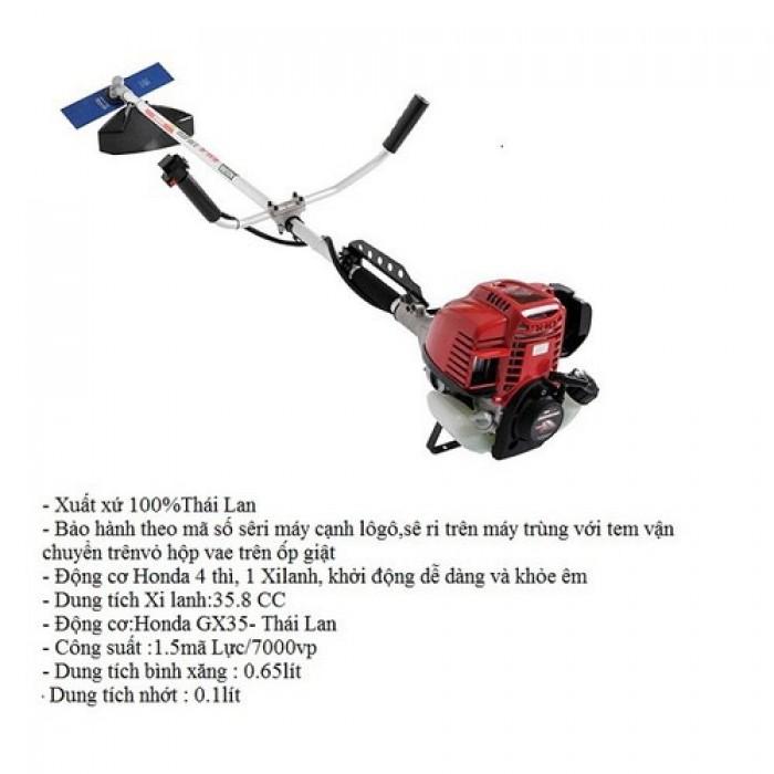 Cung cấp máy cắt cỏ các loại, máy cắt cỏ động cơ 2 thì, 4 thì giá rẻ nhất2