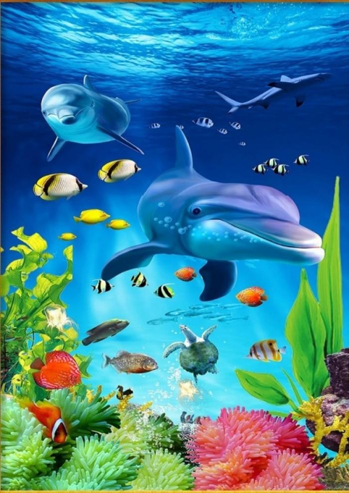 Gạch tranh 3D cá heo4