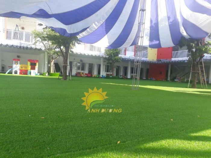 Chuyên cung cấp cỏ nhân tạo cho trường mầm non, công viên, khu vui chơi1