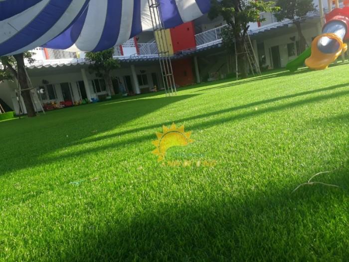 Chuyên cung cấp cỏ nhân tạo cho trường mầm non, công viên, khu vui chơi6