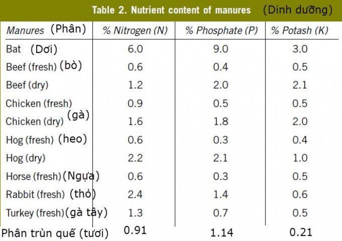 ĐỨC NGHĨA FARM cung ứng phân gà hữu cơ vi sinh tại KON TUM, PLEIKU0