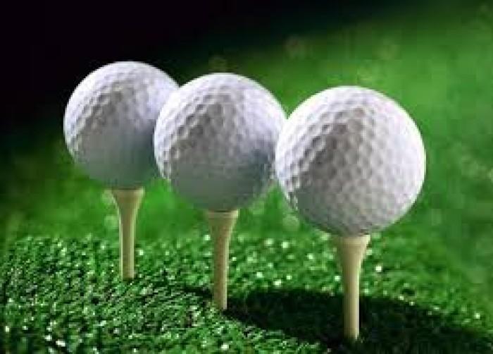 Bóng tập golf, banh tập golf 2 lớp nhập khẩu2