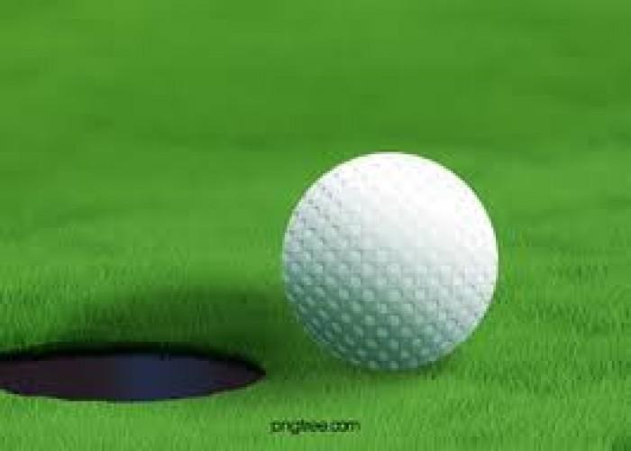 Bóng tập golf, banh tập golf 2 lớp nhập khẩu3