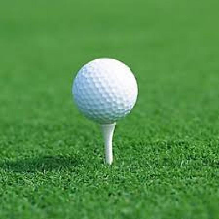 Bóng tập golf, banh tập golf 2 lớp nhập khẩu4