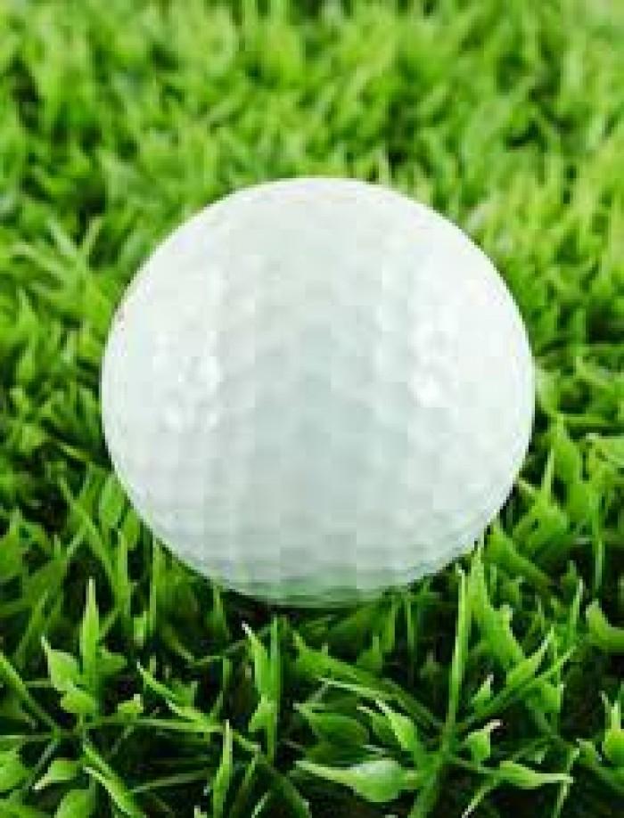 Bóng tập golf, banh tập golf 2 lớp nhập khẩu6