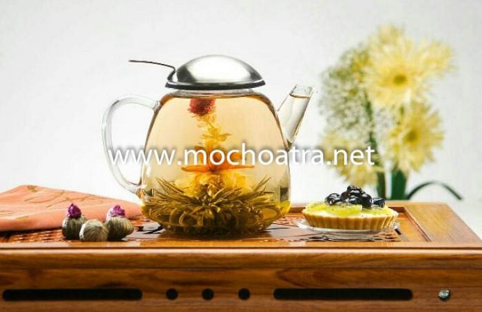 Trà hoa nghệ thuật/Blooming Tea - Mộc Hoa Trà0