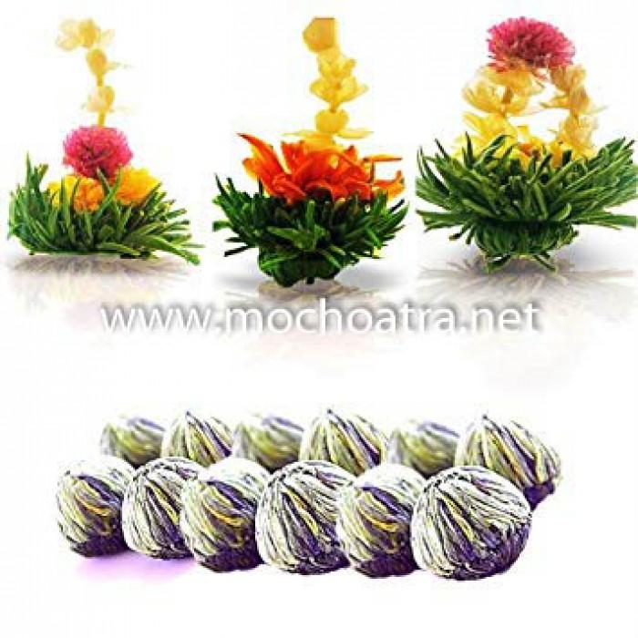 Trà hoa nghệ thuật/Blooming Tea - Mộc Hoa Trà2