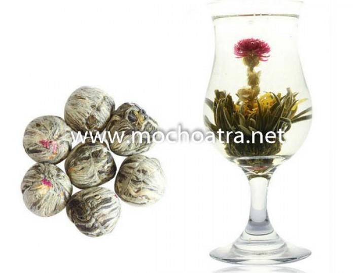 Trà hoa nghệ thuật/Blooming Tea - Mộc Hoa Trà1