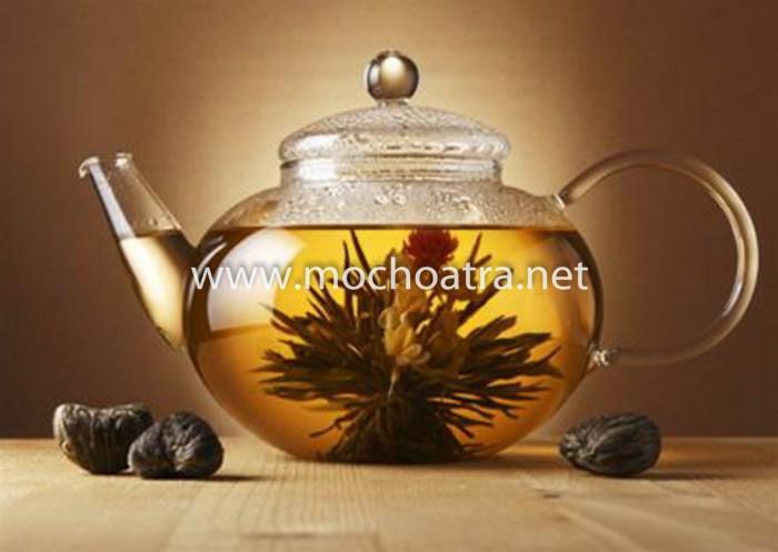 Trà hoa nghệ thuật/Blooming Tea - Mộc Hoa Trà6