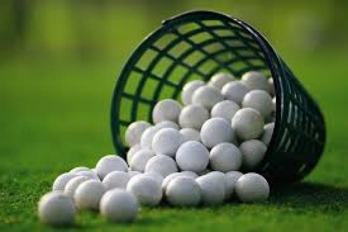 Giỏ đựng bóng golf bằng nhựa cao cấp.0