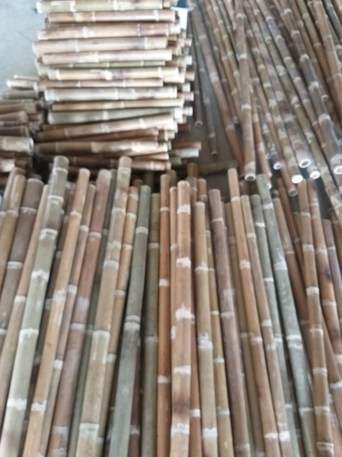Vựa tre Sài Gòn, bán cây tre, bán cây trúc, bán cây luồng3