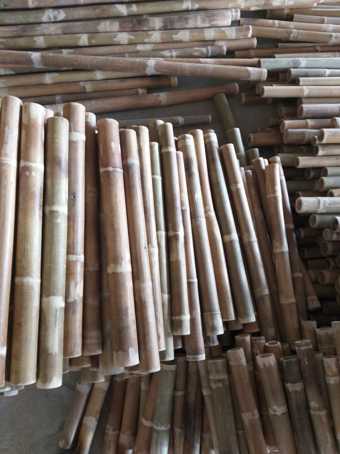 Vựa tre Sài Gòn, bán cây tre, bán cây trúc, bán cây luồng7