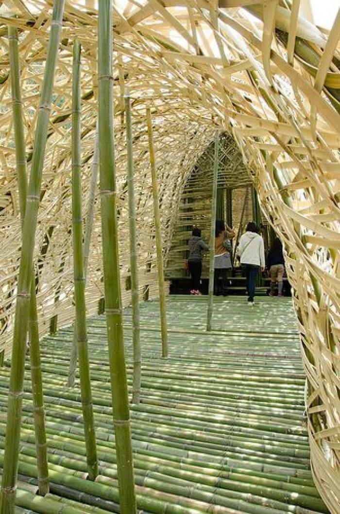 Vựa tre Sài Gòn, vựa tre Sài Gòn bán cây tre, bán cây trúc, bán cây luồng