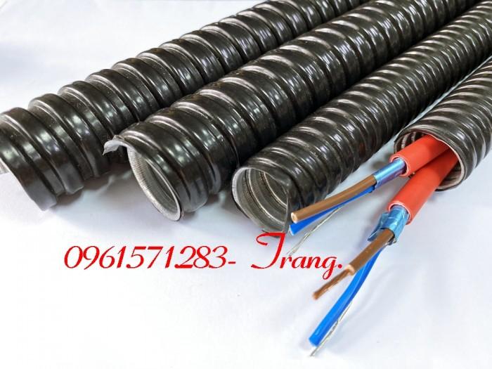 Cáp điều khiển 3x1.0 - Ống ruột gà luồn dây điện