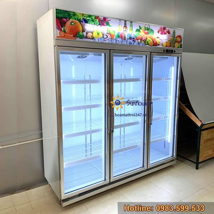 Tủ mát bảo quản hoa quả, trái cây nhập khẩu1