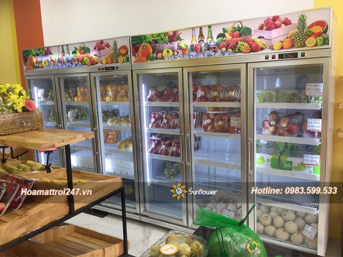 Tủ mát bảo quản hoa quả, trái cây nhập khẩu2