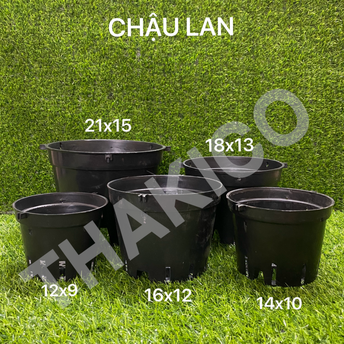 Công ty THAKICO - Chậu kiểng đen cứng đủ size trồng kiểng lá chất lượng, giá rẻ1