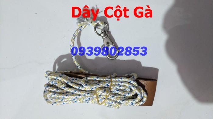 Dây Cột Gà5
