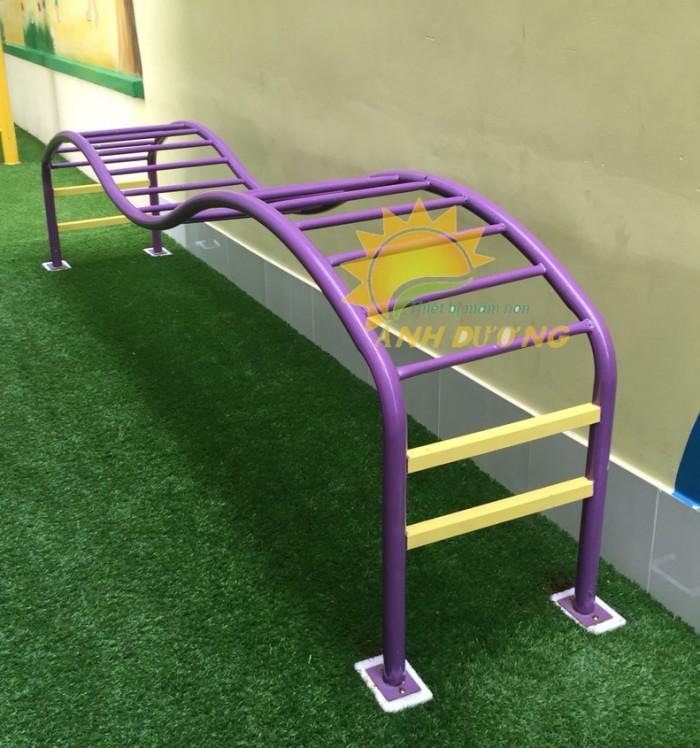 Chuyên cung cấp thang leo vận động thể chất dành cho trẻ em mầm non8