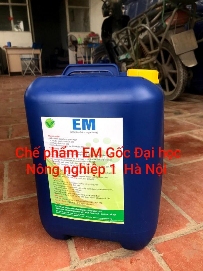 EM gốc trường ĐH Nông nghiệp 1 Hà Nội1
