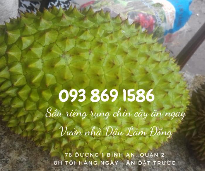 Mua sầu riêng rụng chín cây  trong ngày ngon TPHCM Vườn Nhà Dậu - gọi 093 869 1586 15