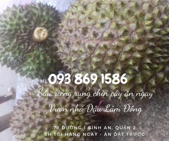 Mua sầu riêng rụng chín cây  trong ngày ngon TPHCM Vườn Nhà Dậu - gọi 093 869 1586 16
