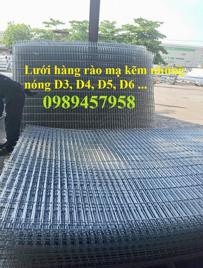 Lưới thép hàng rào mạ kẽm nhúng nóng, Lưới Mạ kẽm nhúng nóng D6 ô 100x1007