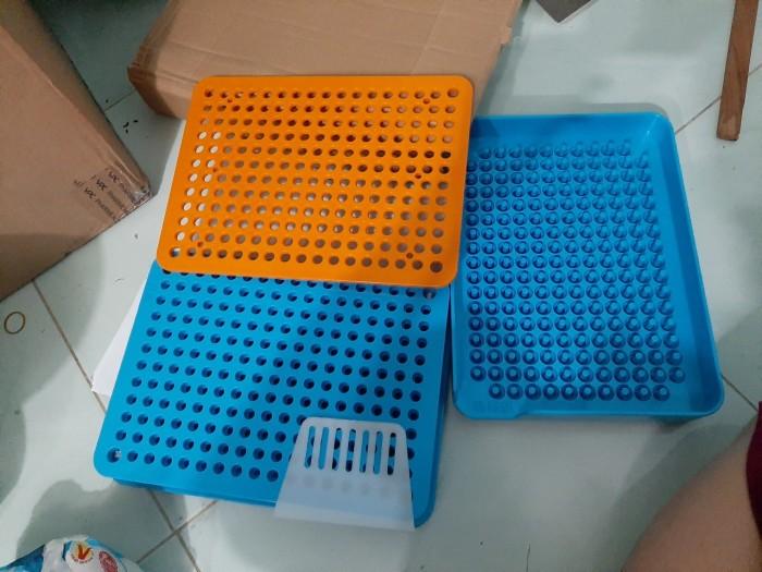 Khuôn đóng viên nang cứng 200 viên nhựa,1