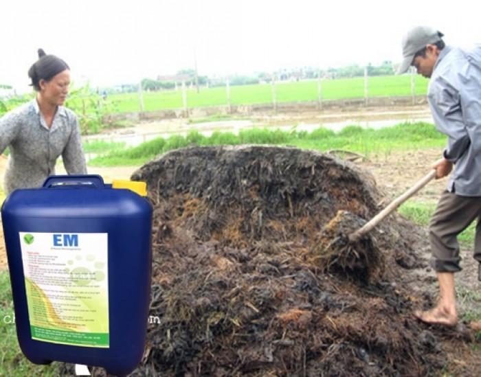 Chế phẩm sinh học EM ủ phân hữu cơ cho cây trồng0