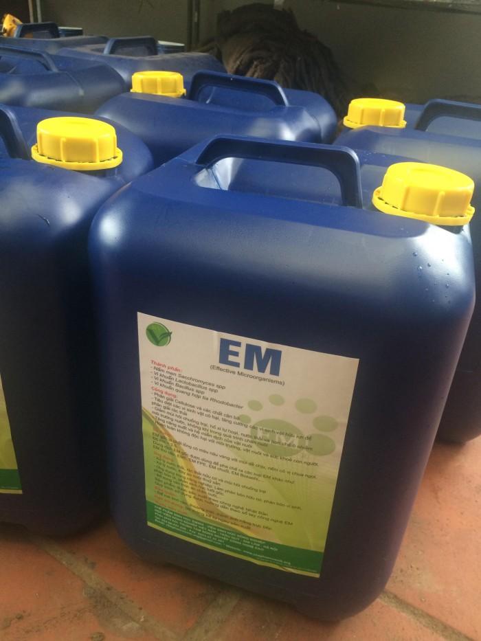 Chế phẩm sinh học EM ủ phân hữu cơ cho cây trồng2