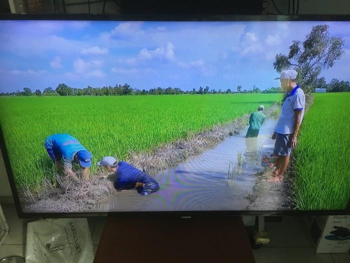 Thu Mua Tivi Cũ Giá cao - Điện Máy 2663