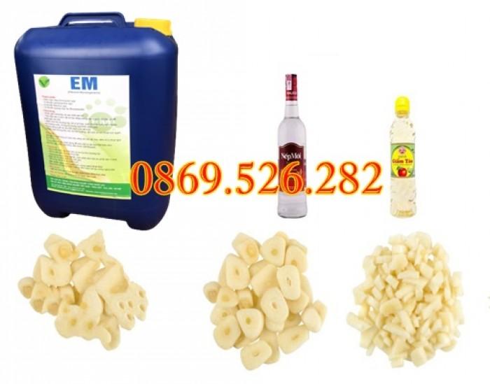 Chế phấm sinh học EM và ứng dụng của các loại EM trong nông nghiệp1