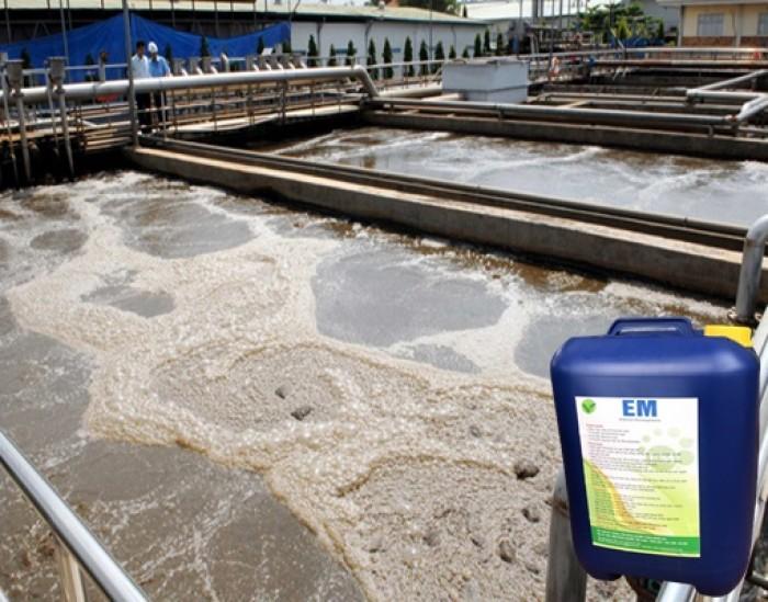 Chế phẩm EM gốc xử lý rác thải, bảo vệ môi trường0