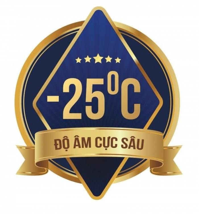 Tủ đông SK Sumikura SKFS-500C(FS) 500 lít chứa kem2