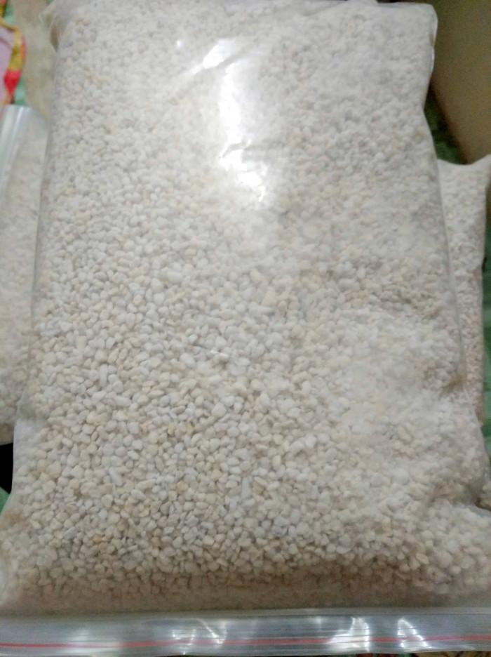 Đá trân châu đá perlite trồng sen đá cây cảnh 1kg