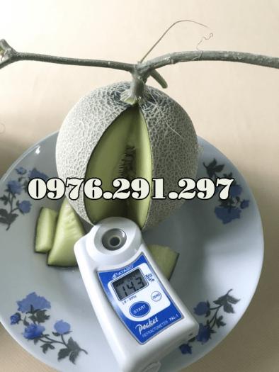 Máy đo độ ngọt Pal 1 Atago Nhật Bản - Bảo hành 12 tháng0