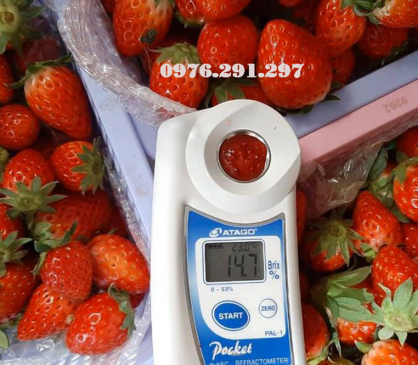 Máy đo độ ngọt Pal 1 Atago Nhật Bản - Bảo hành 12 tháng2