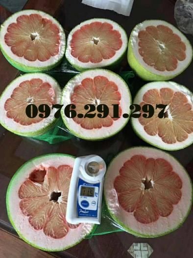 Máy đo độ ngọt Pal 1 Atago Nhật Bản - Bảo hành 12 tháng1