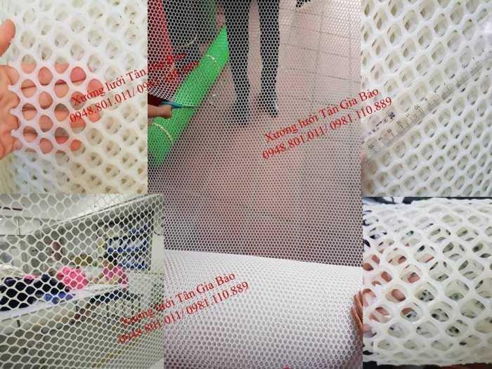 Lưới lưới cứng trắng,miếng lưới nhựa mắt cáo0