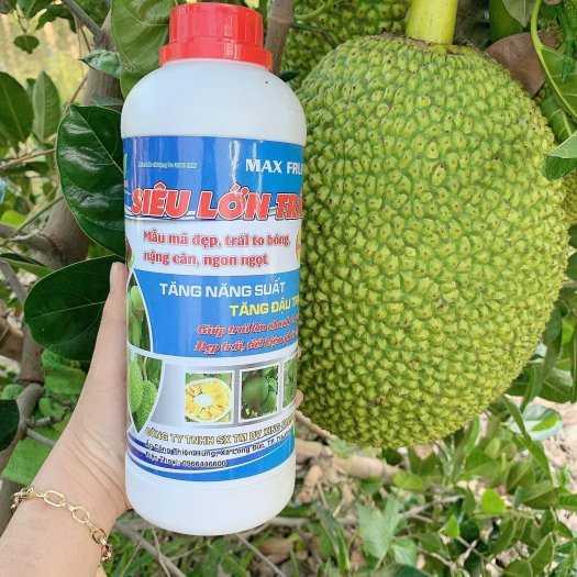 Phân bón Siêu lớn trái (Chuyên dùng cho cây ăn quả)0