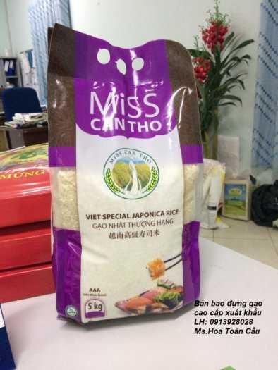 Bán bao đựng gạo, bao dứa, bao tải đựng gạo, giá rẻ cạnh tranh9