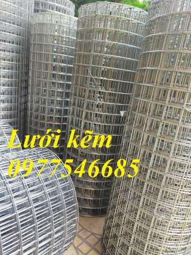 Cung Cấp Lưới Hàn Mạ Kẽm Ô Lưới 25x25, 35x35, 50x50 Tại Hà Nội3