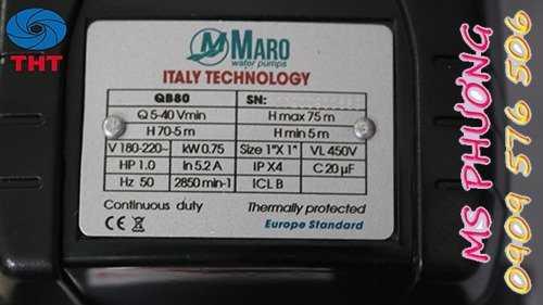 Bán máy bơm tưới tiêu Maro chính hãng giá rẻ4