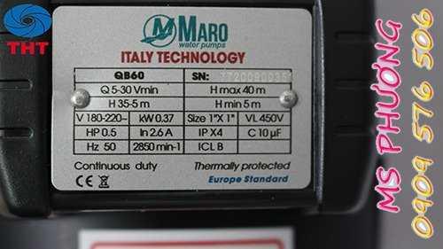 Bán máy bơm tưới tiêu Maro chính hãng giá rẻ3